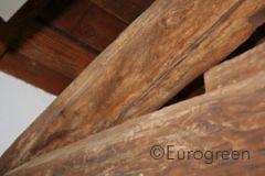 Degradazione abiotica del legno