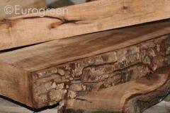 Il legno - materiale biologico