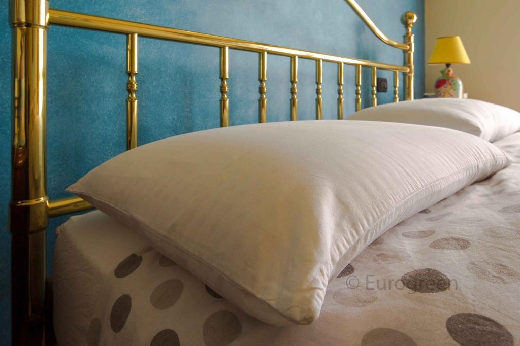 Cimici dei letti come trovarle ecco la guida sicura eurogreen - Parassiti del letto ...