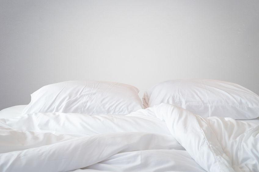 Rimedi contro le cimici dei letti 6 pillole efficaci - Le cimici del letto ...